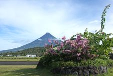 Free Legaspi Airport With Mount Mayon Stock Image - 5135351