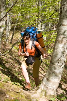 Hiker Girl With Backpack In Forest Royalty Free Stock Photos