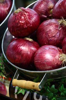 Purple Onions Royalty Free Stock Image