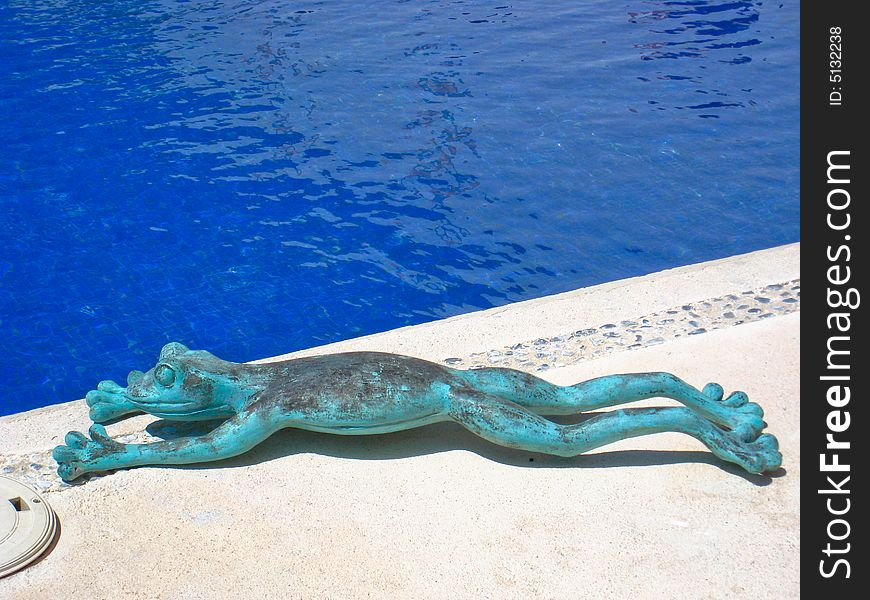 Frog Lying by the Pool