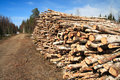 Free Cut Logs At The Edge Of The Forest Stock Image - 5145981