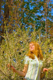 Free Girl Near Yellow Flowers Tree Stock Photo - 5141940