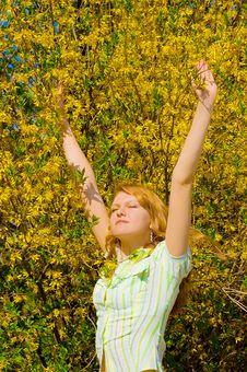Free Girl Near Yellow Flowers Tree Stock Photography - 5142132