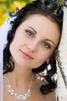 Free Bride By The Tree Royalty Free Stock Photography - 5142167