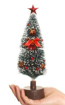 Free Hand Holding Christmas Tree Stock Photo - 5147030