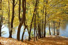 Free Autumn Park Stock Images - 5147594
