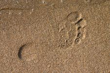 Free Barefoot Print On Sand At Seaside Royalty Free Stock Photography - 5147697