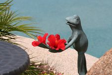 Free Frog Holding Hibiscus Flowers Royalty Free Stock Photos - 5149588
