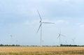 Free A Wind Farm In The Wide Spread Field Stock Image - 51450011