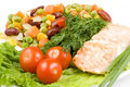 Free Stake From A Salmon With Vegetables Stock Photography - 5151362