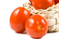 Free Fresh Tomatoes. Stock Image - 5151201