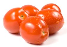 Fresh Tomatoes With Waterdrops. Royalty Free Stock Photos