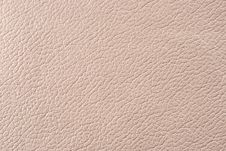 Free Natural Leather Texture Stock Photography - 5151282