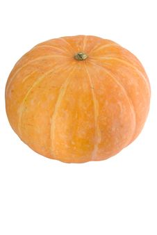 Free Pumpkin Stock Image - 5151671