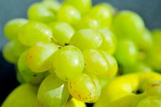 Free Grappes Stock Images - 5151694