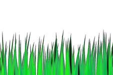 Free Grass2 Royalty Free Stock Image - 5152106