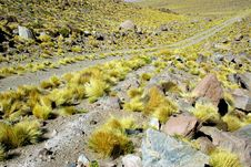 Free Way In Andes, Chile Stock Photo - 5152570