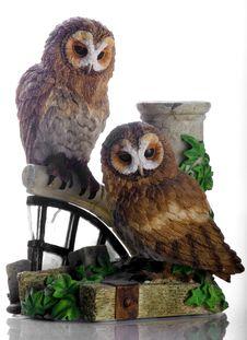 Free Tawny Owls Royalty Free Stock Photos - 5152798