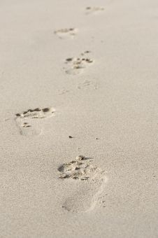 Free Footprints On Beach Royalty Free Stock Photo - 5154735