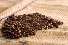 Free Coffee Beans Stock Photo - 5156580