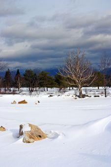 Free Bretton Woods, New Hampshire Stock Image - 5156981
