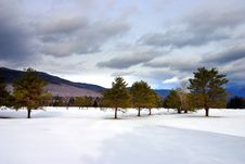Free Bretton Woods, New Hampshire Stock Photo - 5157000