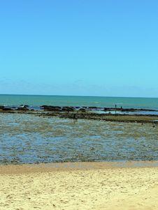 Free Beach Stock Photo - 5157130