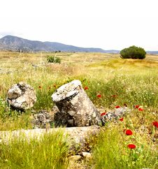 Free Wild Poppy And Ruins Royalty Free Stock Images - 5157139