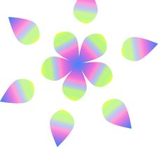 Free Rainbow Flower Stock Photo - 5157490