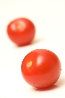Free Tomatoes Stock Images - 5159364