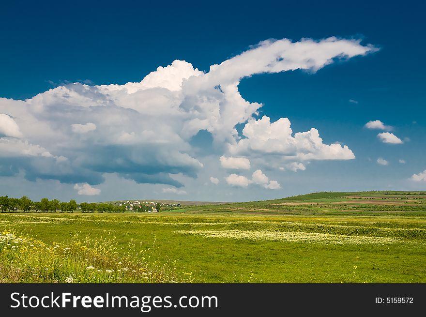Summer rural landscape