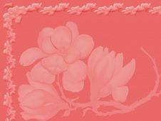 Free I Have An Invitation Royalty Free Stock Photo - 5165135