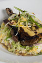 Free Grilled Pork Chop 3 Royalty Free Stock Image - 5173826