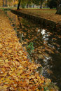 Free Autumn Park Stock Image - 5175961