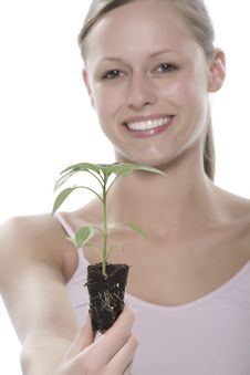 Free Young Woman Holding Young Sprout In The Hands. Royalty Free Stock Photo - 5172495