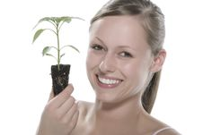 Free Young Woman Holding Young Sprout In The Hands. Royalty Free Stock Photos - 5172608