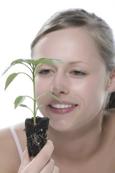 Free Young Woman Holding Young Sprout In The Hands. Royalty Free Stock Photo - 5172655