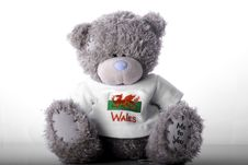 Free Wales Bear Stock Photos - 5175553