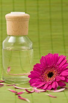 Free Aromatherapy Stock Image - 5175721