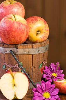 Free Fruit Freshness Stock Photos - 5176083