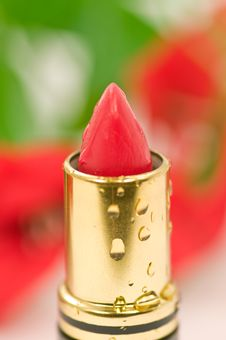 Free Wet Lipstick Stock Photography - 5176542