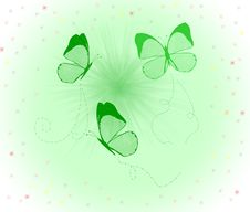 Free Butterfly Fly Royalty Free Stock Photo - 5177065