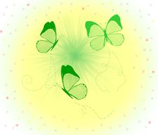 Free Butterflys Stock Photos - 5177083