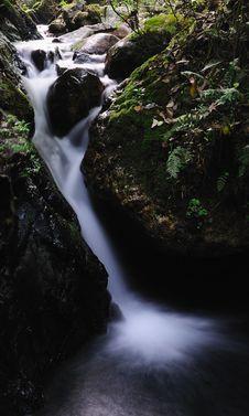 Free A Small Mountain Stream 1 Stock Photo - 5177260