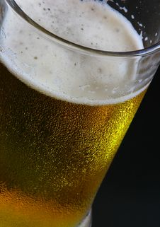 Free Beer Mug Stock Images - 5177844