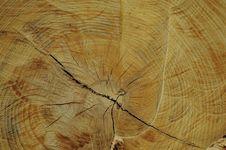 Free Wood Stock Image - 5179041