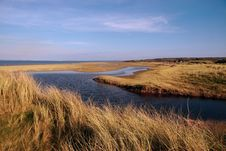 Free Coastal Erosion 1 Stock Photos - 5179803