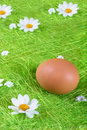 Free Easter Egg Stock Images - 5186094