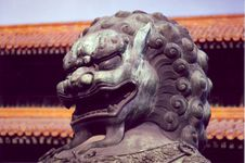 Free Chinese Lion Royalty Free Stock Images - 5181209