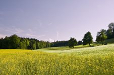 Free Swiss Countryside Stock Photos - 5181613